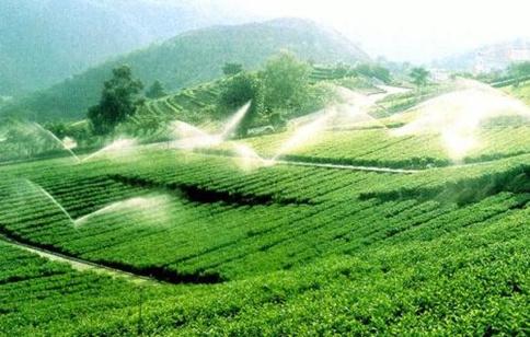 常识积累:中国三大丘陵